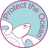 "Protect the Ocean - Oceanwell startet Kampagne an der Cote d""Ivoire"
