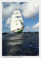 """Der maritime Kalender 2015: Ganz schön """"Watt"""" los an der niedersächsischen Nordsee!"""