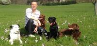 showimage mobiler-hundecoach.ch
