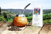 Mate-Tee - ein sanfter Muntermacher