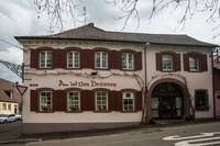 """""""Brusler Spargel"""" im spätbarocken Ambiente"""