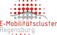 Austausch zwischen Regensburg und Istanbul zum Thema Elektromobilität