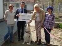 Tierschutzverein Rüsselsheim freut sich über 2.000 € -  Rüsselsheimer Volksbank unterstützt ehrenamtliches  Engagement
