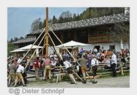 Bayerns bestbewachter Maibaum 2015 steht in Schliersee