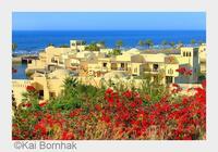 Cove Rotana Resort in Ras al Khaimah erhält begehrten World Travel Award