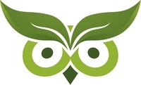 Evergreen Media: SEO für KMUs, die Ergebnisse sehen wollen
