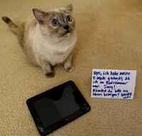 """SquareTrade-Umfrage: So """"nutzen"""" Haustiere mobile Geräte"""