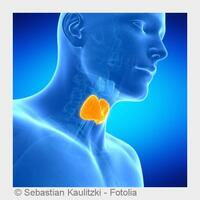 Arzt Prof. Dr. Christian Wüster aus Mainz über die Schilddrüse