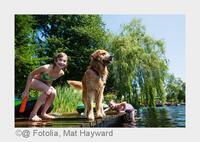 Baden mit Hund 2015: Urlaub, wo auch Waldi ins Wasser darf