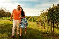 Wein verleiht Virginia-Tourismus starke Impulse