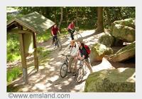 showimage Mit dem Fahrrad von Museum zu Museum