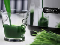Mit dem Kuvings Whole Slow Juicer gesunde Säfte selber pressen