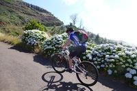 Mit dem Bike über die Berge Madeiras