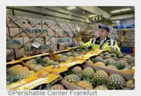 20 Jahre Garant für Frischwaren am Frankfurter Flughafen: Air Cargo Community Frankfurt gratuliert dem Perishable Center Frankfurt zu seinem Jubiläum