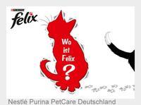 FELIX sucht clevere Katzenverstecke