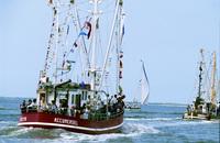 Krabben, Fisch und Mee(h)r: Gaumenfreuden und Naturerlebnis an der niedersächsischen Nordsee