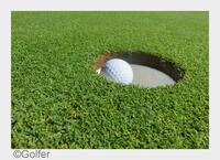 Golf: Mehr Erfolg durch Golf-Domains
