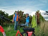 Deutsche Weinstraße - Weinlese genüsslich mit E-Bikes erleben