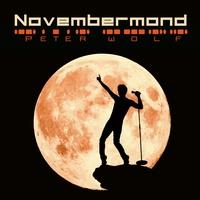 """Album Neuerscheinung PopRock: Peter Wolf """"Novembermond"""""""