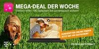 Telekom Mega-Deal: 10 Euro-Gutschein für Leinentausch.de