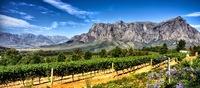 Mit Enchanting Travels weltweit Weingenuss erleben