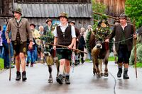 Viehscheid-Däg: Pfronten feiert seine fünfte Jahreszeit