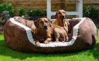 Neues orthopädisches Hundebett Pepper mit XXL-Kuschel-Rand