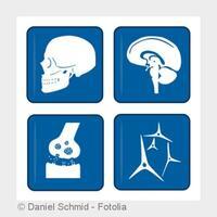 Neurochirurgie? Eine der ältesten medizinischen Disziplinen!