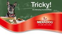 Die neue Meradog Hundeschule bringt Spaß und Abwechslung für kleine und große Hunde