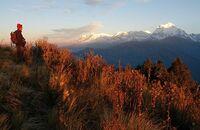 Wikinger Reisen: Neustart in Nepal