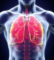 Chronische Atemwegserkrankungen im Blickpunkt
