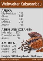 Kakaoanbau im Blickpunkt