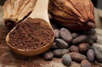 Zahlreiche Herausforderungen in der Kakaowirtschaft