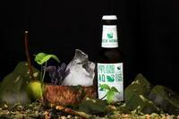 Aqua Monaco bringt das erste Bio Kräuter Tonic Water auf den Markt- GREEN MONACO