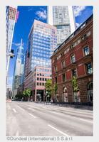 Avison Young bezieht neue Deutschland-Zentrale in Frankfurt