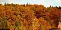 Herbst total: Zauber über der Landschaft