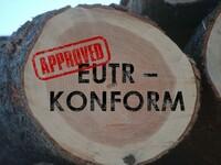 GFA Certification startet IT-Plattform timber-risk.com©
