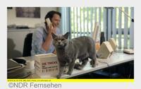 NDR TV-Tipp: Die Tricks mit Hund und Katze, Teil 2