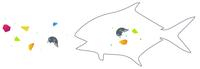 Hat die Bioökonomie Lösungen für das globale Mikroplastikproblem?