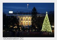 """Weihnachten in Washington DC: Stimmungsvolle Aktivitäten für einen Städtetrip in der """"Holiday Season"""""""