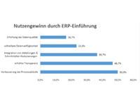 Vorteile aus ERP-Beratungsleistungen
