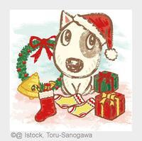 Tierischer Spaß unter dem Weihnachtsbaum