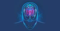 Weckruf an alle Hörgeschädigten: Das Tragen von Hörgeräten erhält die geistige Fitness