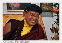 Aktuelle Stellungnahme des 12. Gyalwang Drukpa zur Flüchtlingssituation