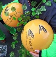 Bälle für den Karneval - Verlosung für Wurfmaterial gestartet