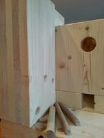 NUR HOLZ Massivholzhaus Montage - Sicher bauen auch im Winter