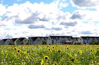 LAVA Energy: Wärme mit modernster Technologie für das Rote-Mühle-Quartier in Wittstock