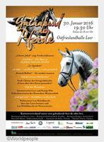 Galaabend der Pferde - das Show-Event in Ostfriesland!