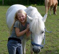 Pony Führerschein® Lizenz: Ab 2016 mit erweitertem Betreuungskonzept