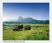 Südtirol neu entdeckt: Mediterranes Flair trifft alpinen Charakter